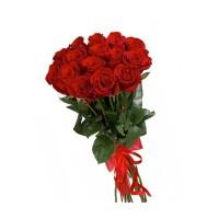 15 красных роз  50см